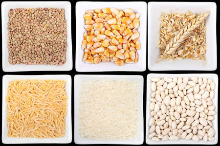 variety of legumes and cereals in bowls photo