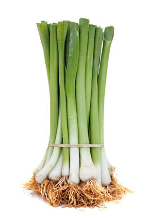 spring onions: bunch of spring onions on white