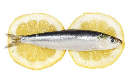 sardinas: sardina cruda en rodajas de limón
