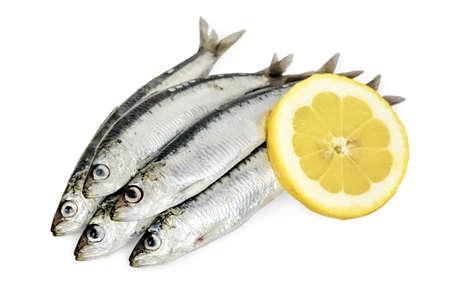 sardinas: sardinas crudas con rodaja de limón sobre fondo blanco
