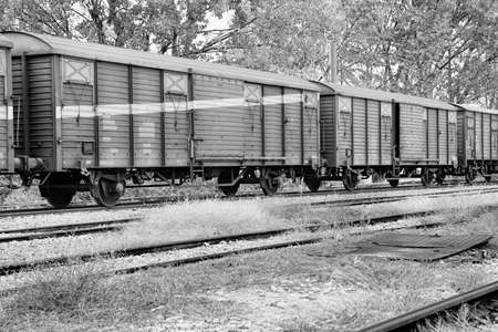 black and white of freight train wagons  photo