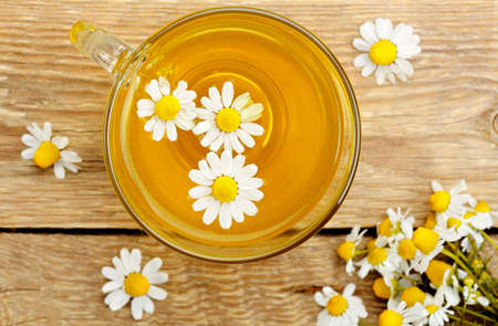 top view of cup of chamomile tea with chamomile flowers photo