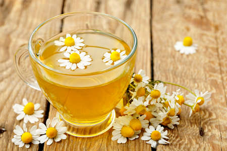 cup of chamomile tea with chamomile flowers   photo