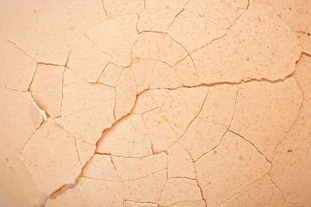 macro of cracked egg shell photo