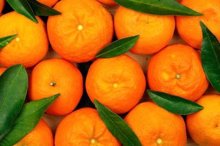 fresh mandarin oranges with leaves Standard-Bild