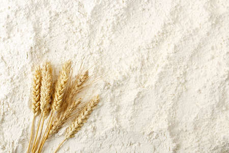 bakery products: wheat ears on flour surface, full frame