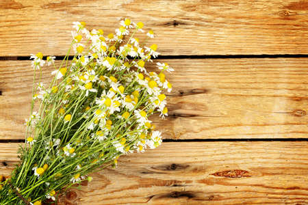 bunch of chamomile flowers on weathered wood photo