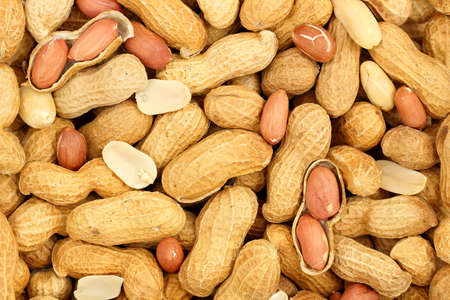 shelled: large number of shelled and unshelled peanuts