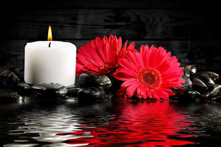 tranquility: burning candle with gerbera flowers and stones, tranquility concept Stock Photo