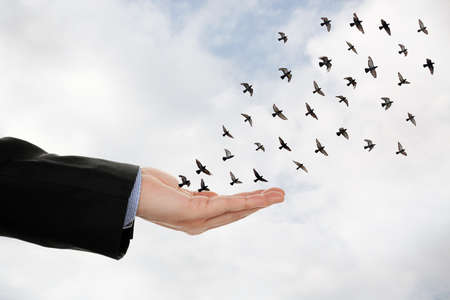 flock of birds flying off a male hand, abstract concept