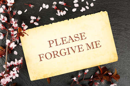 apologise: forgive me on paper with almond tree twig on stone texture Stock Photo
