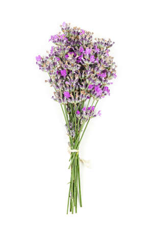 bunch of lavender flowers on white surface Banco de Imagens