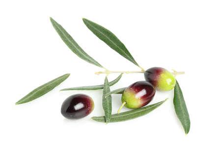 olives with olive tree twig isolated on white Zdjęcie Seryjne