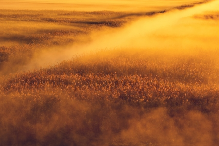 Mystic landscape Stock Photo