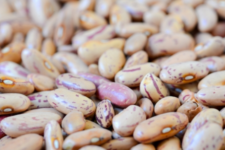 Close-up dry white beans on natural light Stock Photo - 15554657