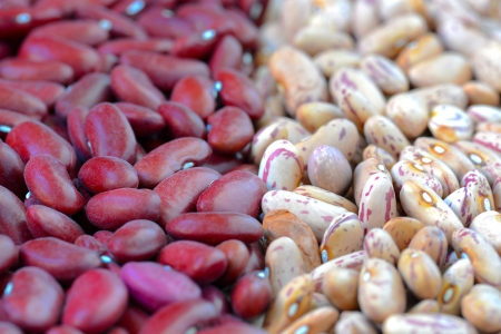Close-up dry white and red beans on natural light Stock Photo - 15554655