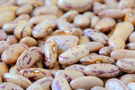 Close-up dry white beans on natural light Stock Photo - 15566885
