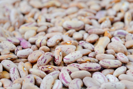 Close-up dry white beans on natural light Stock Photo - 15566888