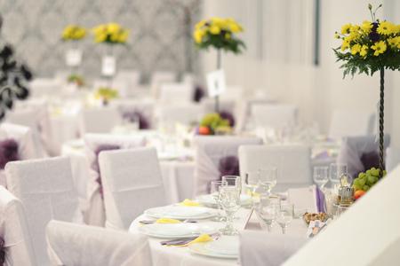 indoor shot: Vector de la boda, serie, tiro de interior