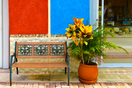 Flower, wall  and bench abstract street look photo