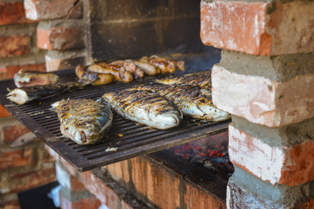 Fish seated on brick barbecue fried in natural light photo