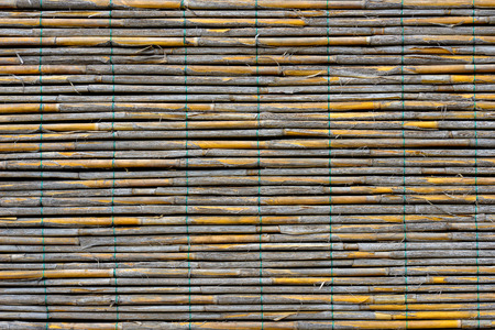 reed: Reed panel Stock Photo