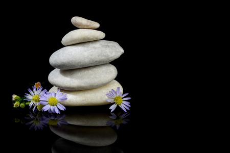 Flower and stones stacked isolated with black background reflection