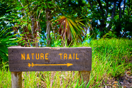Wooden sign in nature