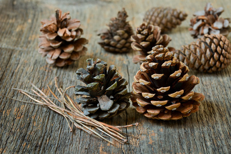 fir cones: Isolated fir cones with wooden background
