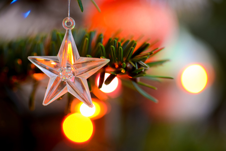 starlet: Starlet Christmas decorations hanging in tree