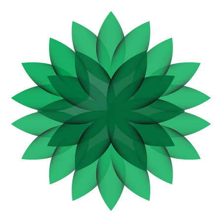 Green Wheel Flower transparent isolated Vector