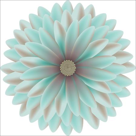 tender: Tender chrysanthemum floral round patterns realistic Illustration