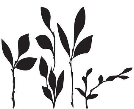 Vector abstrakten schwarzen Muster von Blättern der weißen Hintergrund Standard-Bild - 47380105