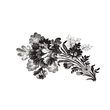dashes: Vector beautiful hand drawn flowers bouquet. Element design pattern on white background. Elegant luxury texture colors trend.