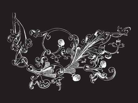 vegetal: Hand drawn illustration of raspberry branch Baroque vector. Branch with berries and leaves. Vegetal ornament. Black and white colors