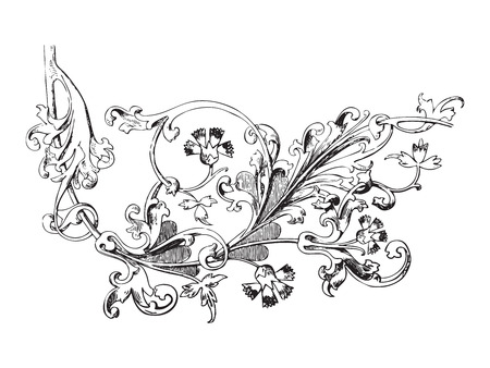 vegetal: Hand drawn illustration of twig with flowers and leaves Baroque vector. Cornflowers. Vegetal ornament for coloring book. Black and white colors
