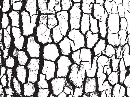 teak: Bark close up texture vector illustration. Black and white colors