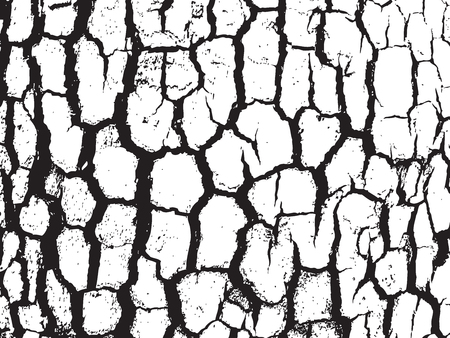 Bark close up texture vector illustration. Black and white colors
