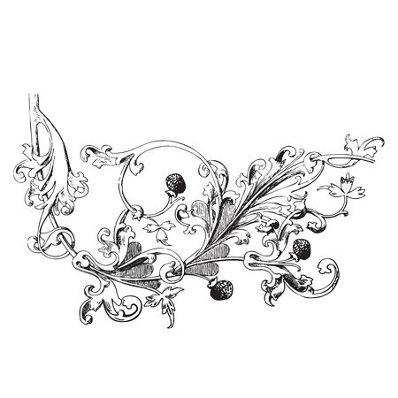 vegetal: Hand drawn illustration of raspberry branch Baroque vector. Branch with berries and leaves. Vegetal ornament for coloring book. Black and white colors