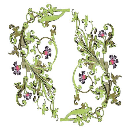 vegetal: Hand drawn illustration of twig with flowers and leaves Baroque vector. Cornflowers. Vegetal ornament round on wite background Stock Photo