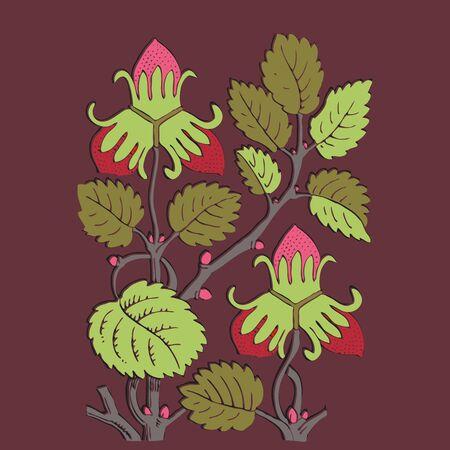 vinous: Colorful botanical hand drawn strawberry bush isolated on vinous background. Vector illustration
