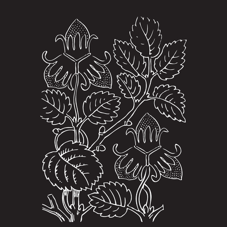 vegetal: Hand drawn illustration of strawberry bushes vector. Branch with buds and berries. Vegetal ornament. Black and white colors