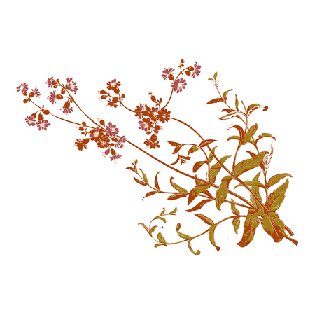 herbal background: Colorful botanical hand drawn branches with flowers isolated, herbal flowers isolated on white background vector illustration