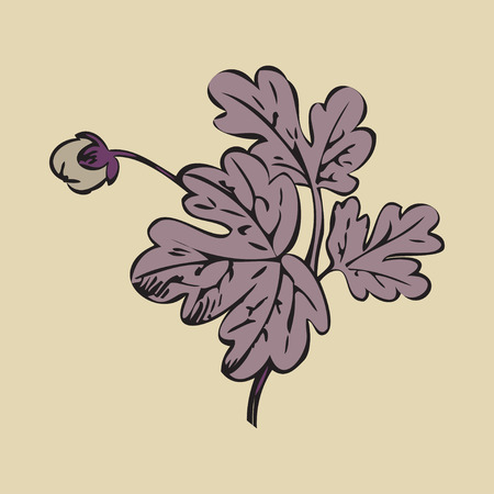 Floral bush retro on white background vector, hand drawn decorative flower vintage contour, closeup branch with bud print design Ilustracje wektorowe