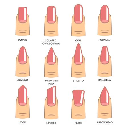 Set of different shapes of nails on white. Nail shape icons. Manicure polish. Çizim
