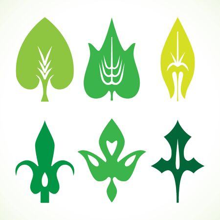 Decorative green leaves pattern set isolated on white vector. Various shapes of green leaves. Elements for eco and bio Illustration