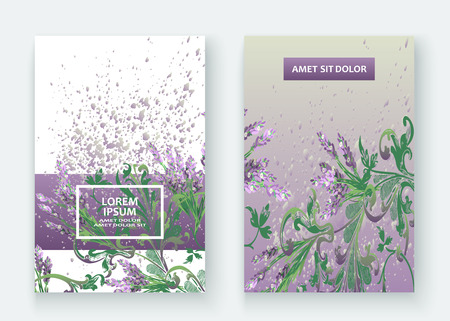 Lavender floral pattern cover design vector illustration set Çizim
