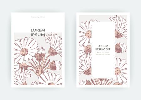 Card flowers Calendula, Chrysanthemum, Chamomile, Daisy, Aster. Wedding ornament minimalist pastel colors. Floral trendy poster, invite. Vector decorative greeting card invitation design background Ilustracja