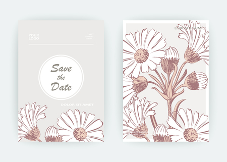 Card flowers Calendula, Chrysanthemum, Chamomile, Daisy, Aster. Wedding ornament minimalist pastel colors. Floral trendy poster, invite. Vector decorative greeting card invitation design background Vettoriali