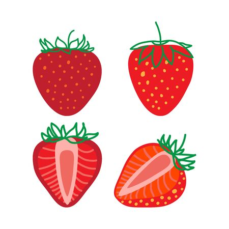 Isolated Strawberrys, design colorful vector illustration. Collection of whole and sliced fresh Strawberry berry isolated on white background